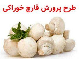 طرح پرورش قارچ خوراکی