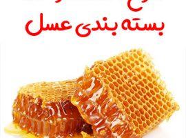 طرح احداث واحد بسته بندی عسل
