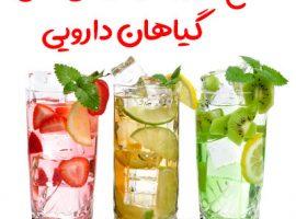 طرح تولید نوشیدنی های گیاهی