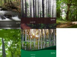 مجموعه قالب پاورپوینت با موضوع جنگل