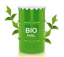 تحقیق درباره انرژی و سوخت های زیستی