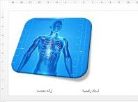 قالب پاورپوینت حرفه ای پزشکی (آناتومی)