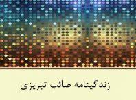 پاورپوینت زندگینامه صائب تبریزی