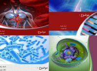 چهار قالب پاورپوینت زیست شناسی